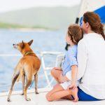 Jadranje s psom - 8 nasvetov, kako psu pomagati, da postane morski pes 8
